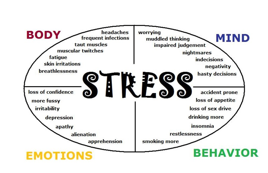 Stress, the Nervous System & the Road to Resiliency