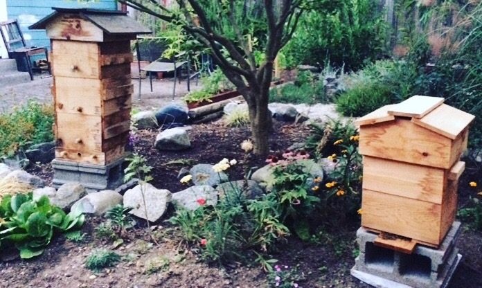 Free Community Projects to Check Out in Kits