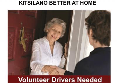 BAH Vol Driver