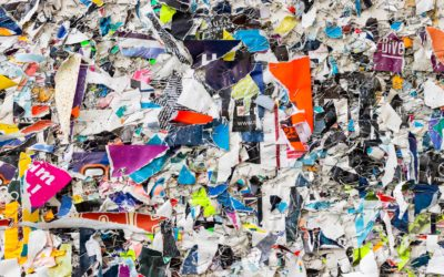 Celebrating Earth Day with Recycled Paper Collage Making